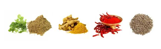 rajasthani spices